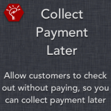 Collect Payment Later