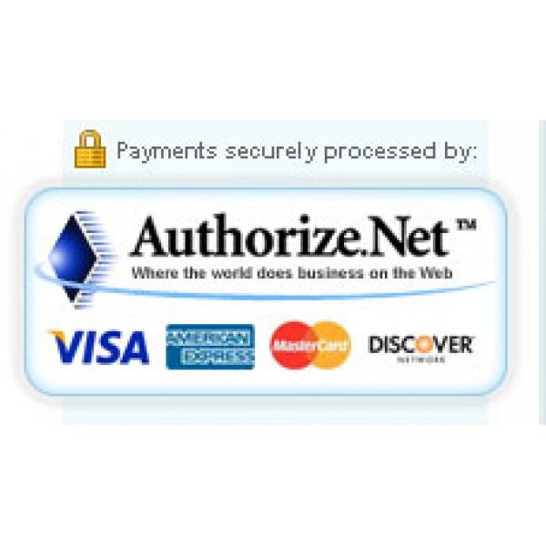 Authorize net SIM (2 x/3 0)